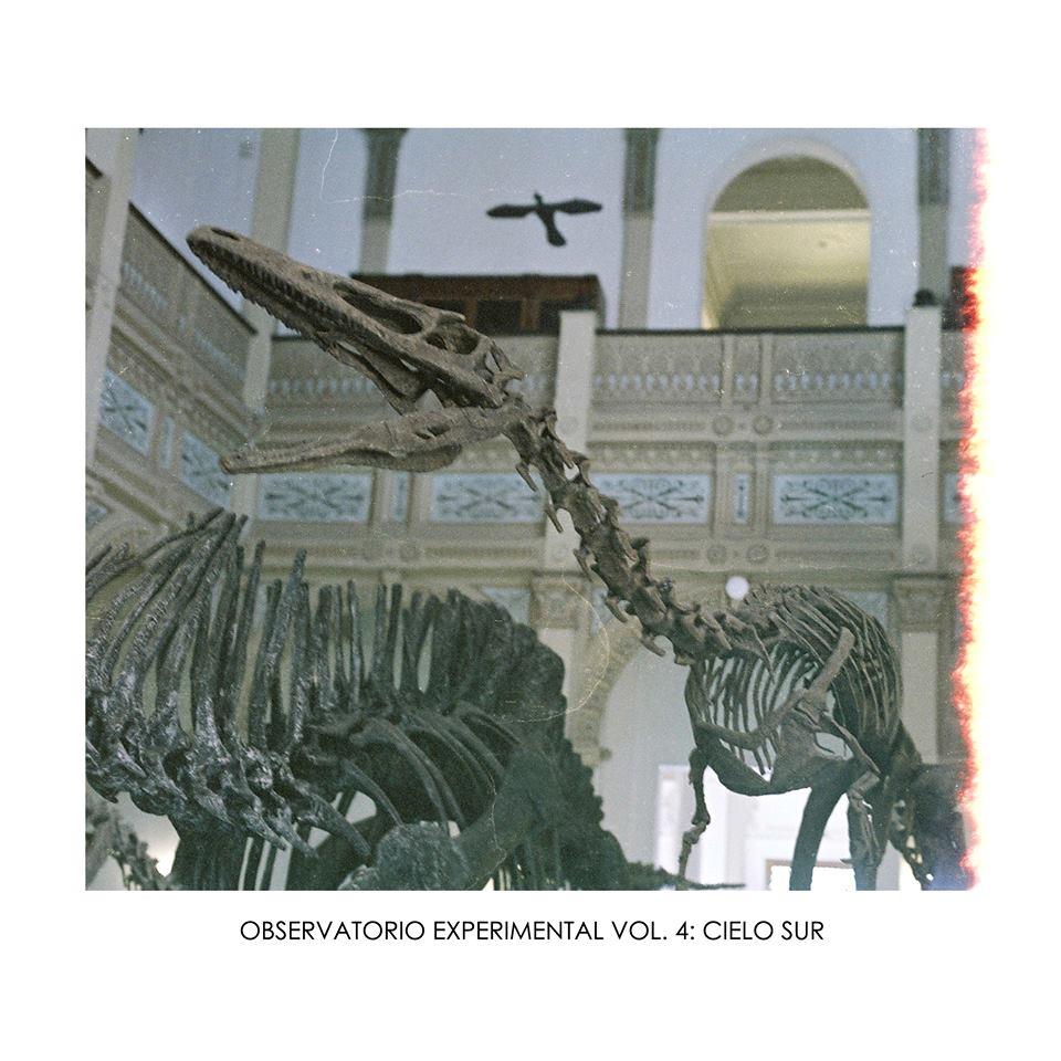 """""""Observatorio Experimental"""" vol. 4 y vol. 5"""