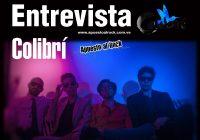 Colibrí: Un Universo Musical, un Nido Sin Fronteras – Entrevista