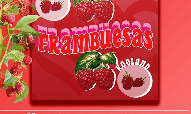 """Kooland Presenta Nuevo Single """"Frambuesas"""""""